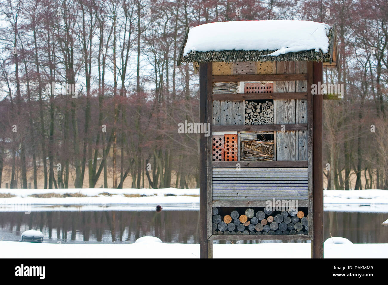 insect hotel in winter with snow, Germany - Stock Image