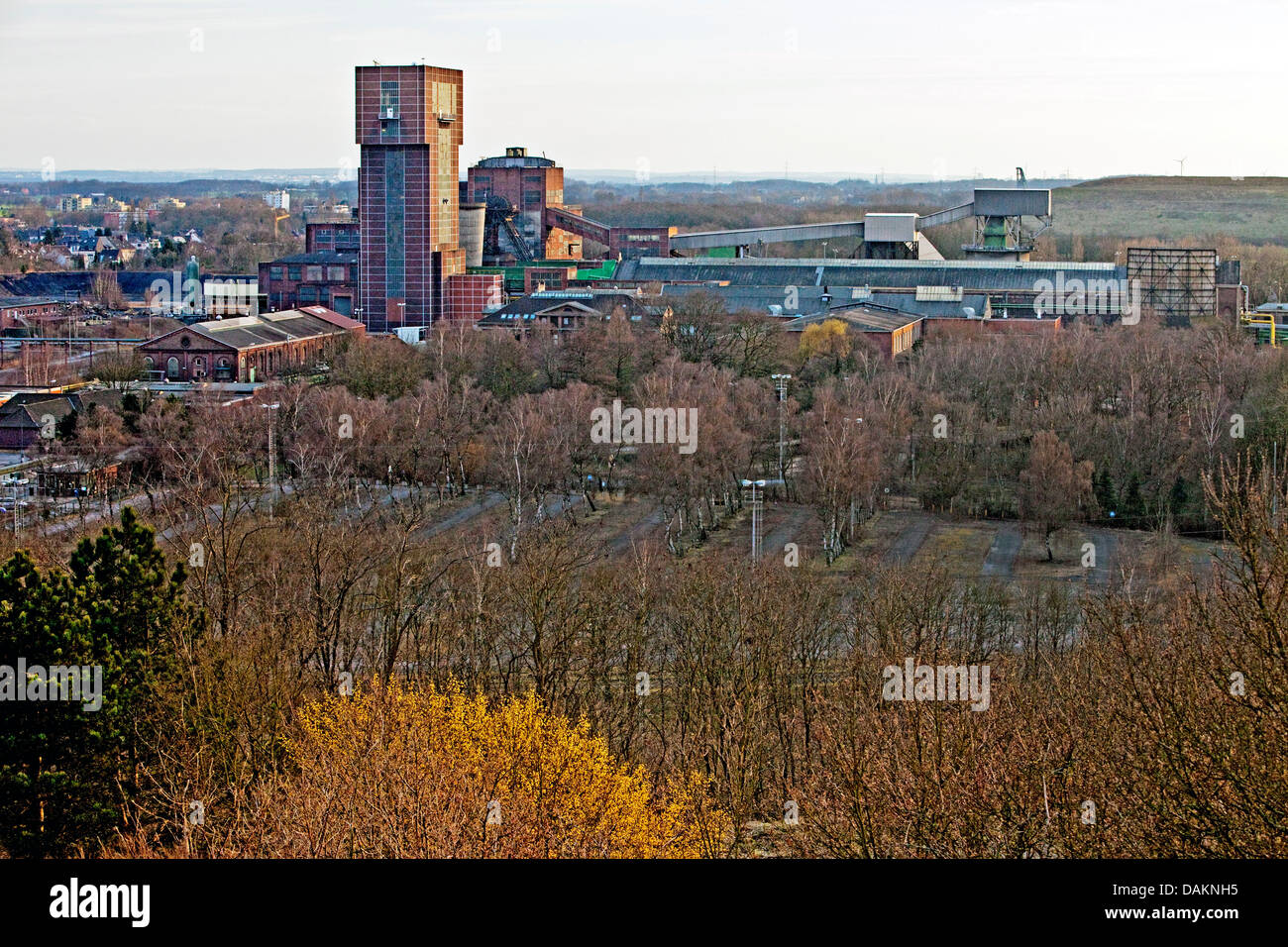 view from the Kissinger Hoehe at the pit Ost of the coal mine Heinrich Robert with the Hammerkopfturm, Germany, - Stock Image