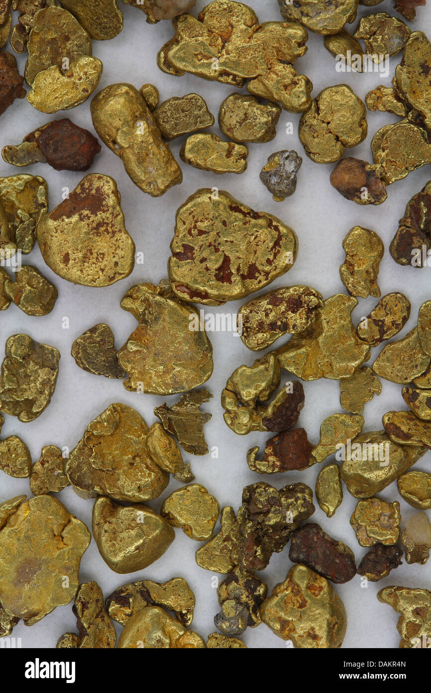 Natural California (USA) Placer Gold Nuggets - As Found in Stream - Stock Image