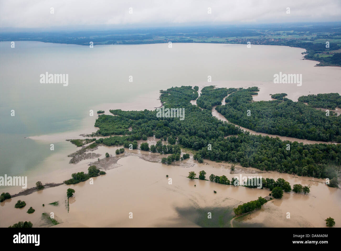 river delta of Achen, Hirschauer Bucht  at lake Chiemsee flooded in June 2013, Germany, Bavaria, Lake Chiemsee - Stock Image