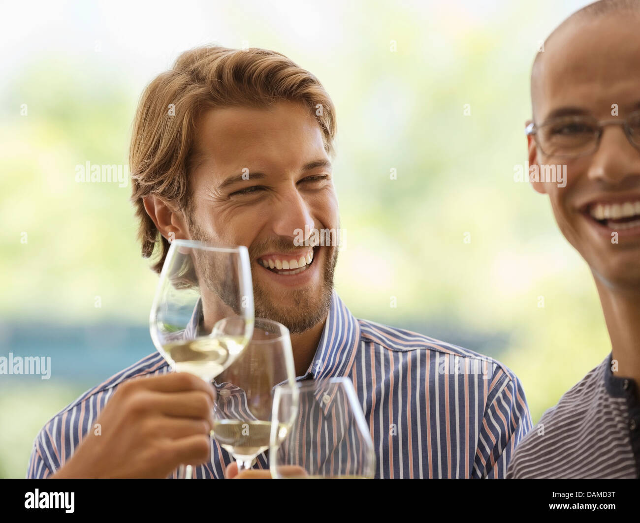 Men drinking wine together indoors - Stock Image