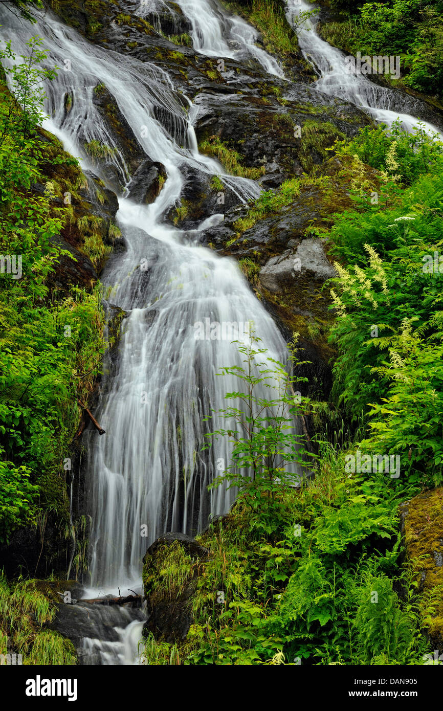 Mountain cascade with late spring runoff Prince Rupert British Columbia Canada - Stock Image