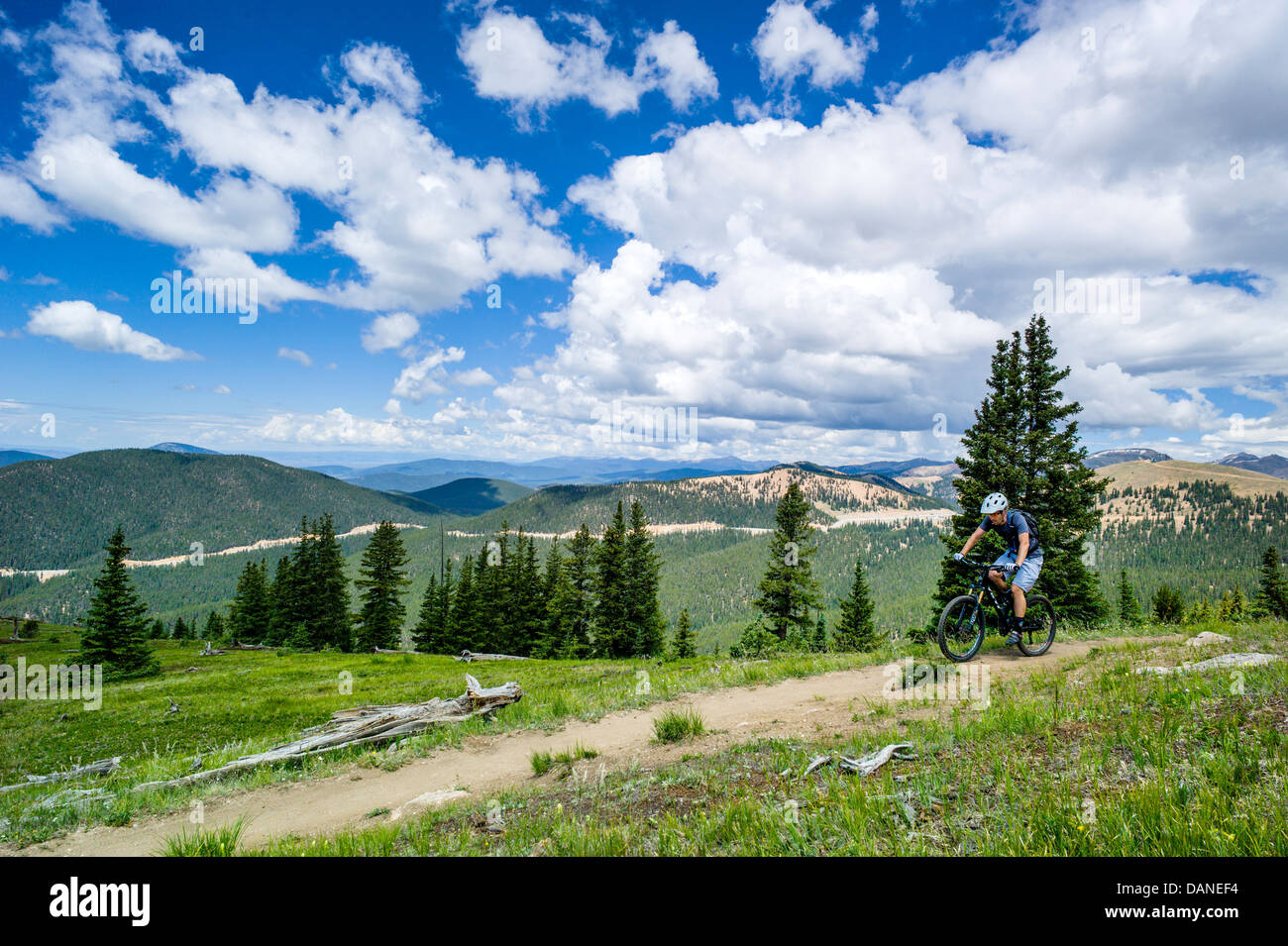 Mountain biker on the Monarch Crest Trail, Central Colorado, USA - Stock Image