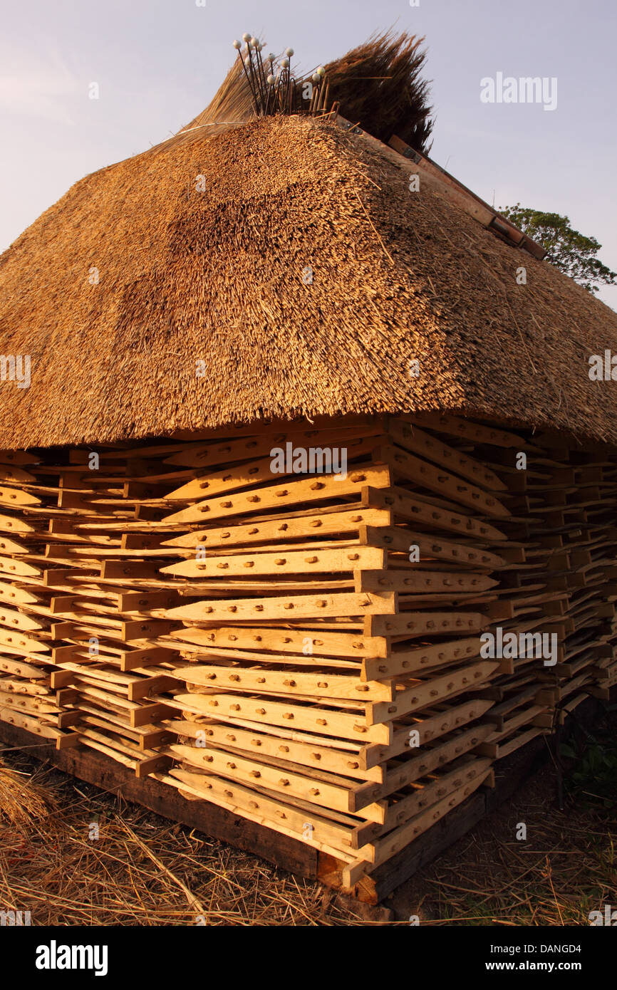 Priddy Somerset the hurdles and thatch was rebuilt in 2013 - the wooden hurdles could be used to pen sheep - Stock Image