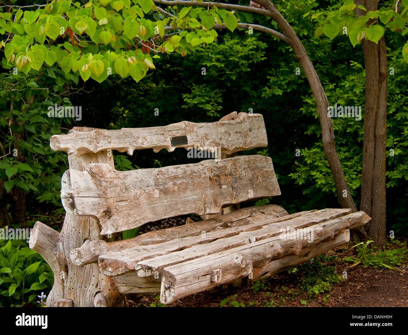 Rustic Wooden Park Bench surrounded by trees in park setting.USA - Stock Image