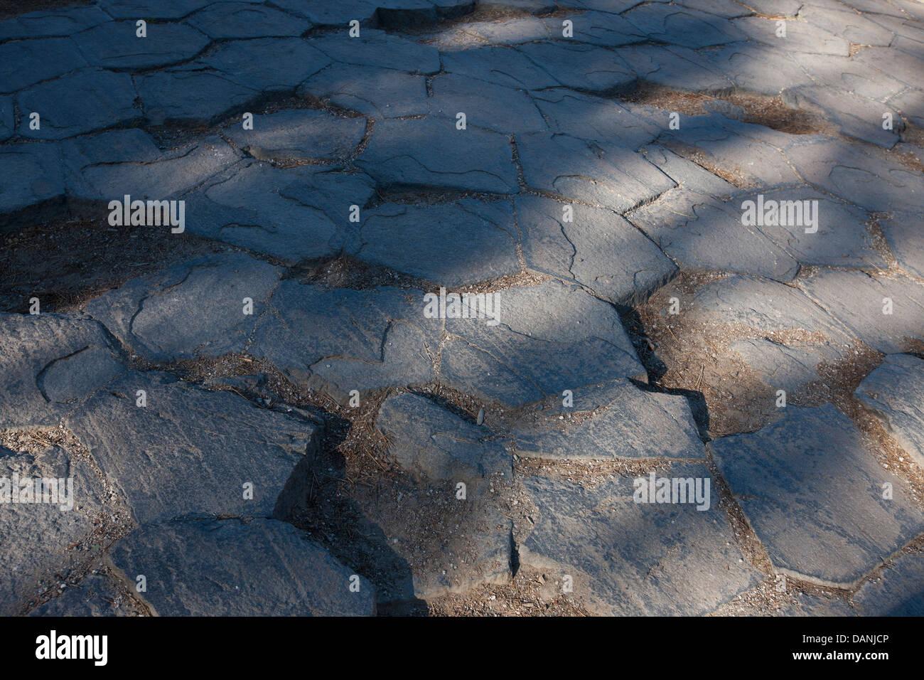 Tile pattern of 120 degree shrinkage cracks on top of columnar basalt rock formations, Devils Postpile National - Stock Image