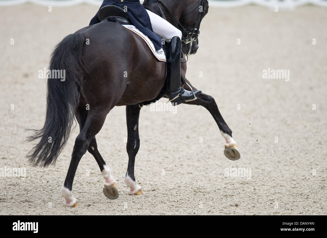 Matthias Alexander Rath rides Totilas during the dressage riding at the CHIO in Aachen, Germany, 14 July 2011. The - Stock Image