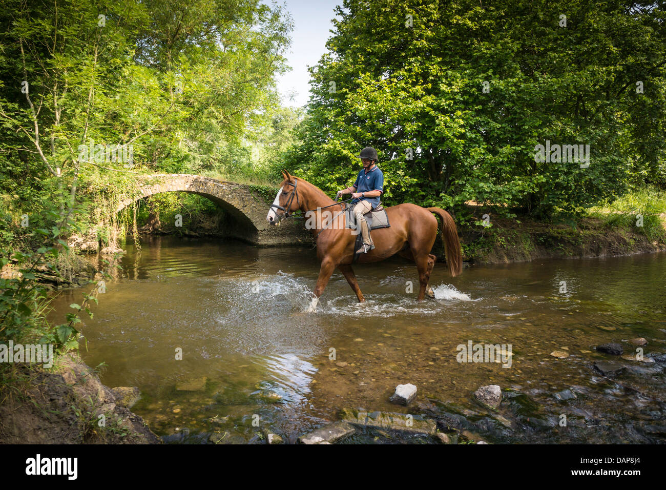 A horse and rider cross a small stream on the Fosse Way in Wiltshire. - Stock Image