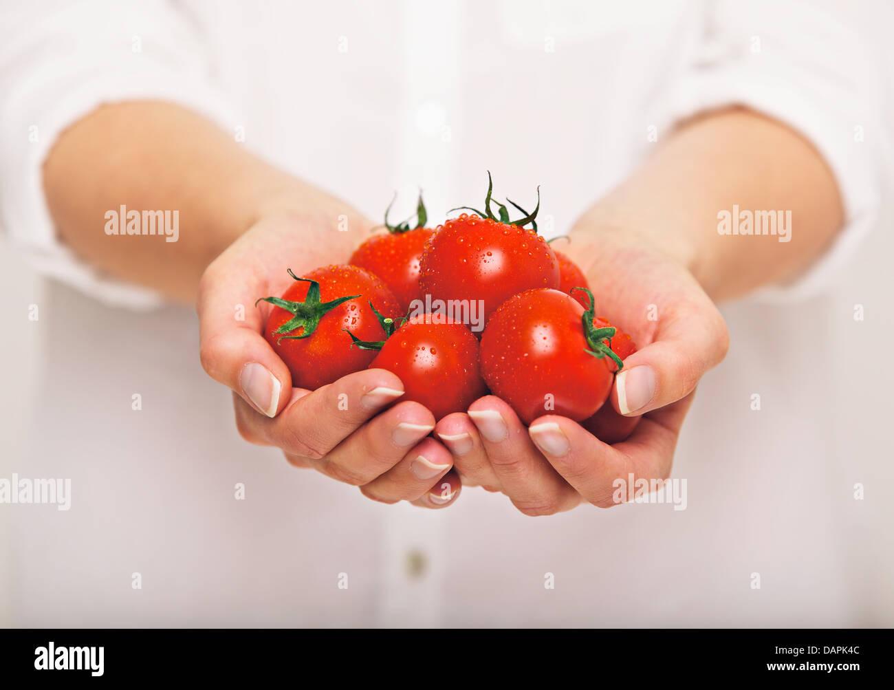 Female's both hands holding fresh tomatoes - Stock Image