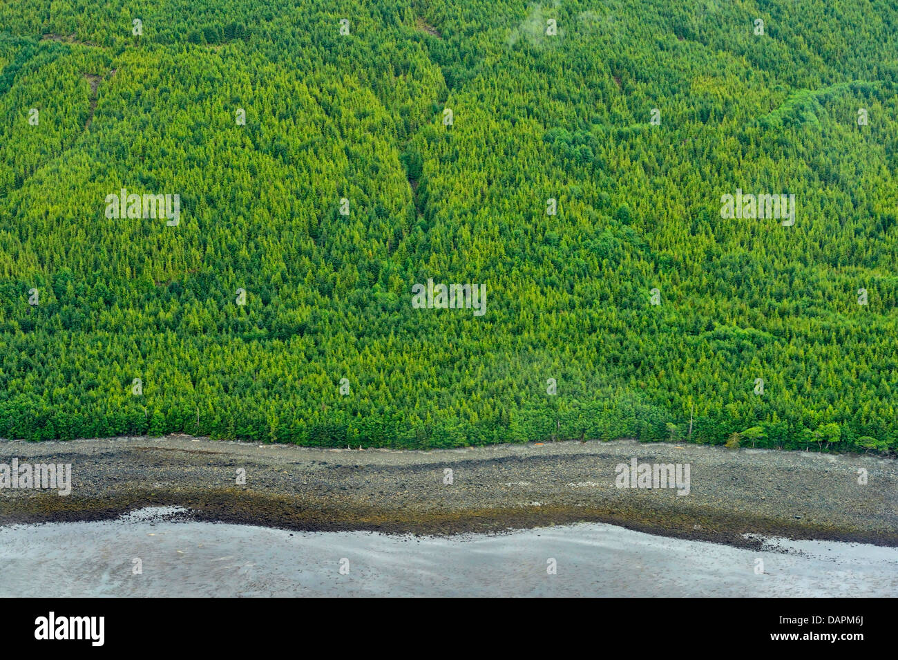 South Moresby island from the air Haida Gwaii Queen Charlotte Islands British Columbia Canada - Stock Image