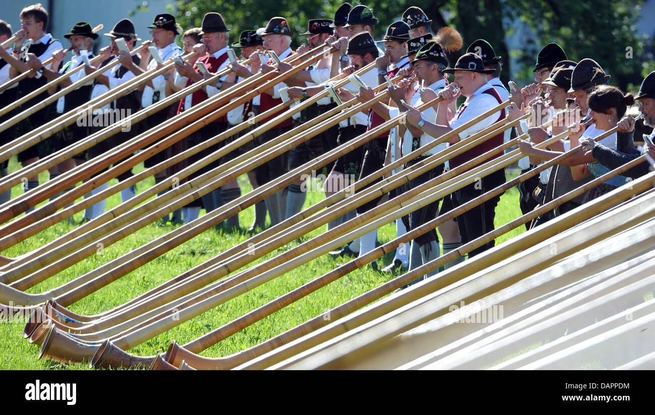 Zahlreiche Musiker spielen am Sonntag (28.08.2011) in Seeg (Schwaben) Alphorn. Mehr als 300 Alphornbläser aus - Stock Image
