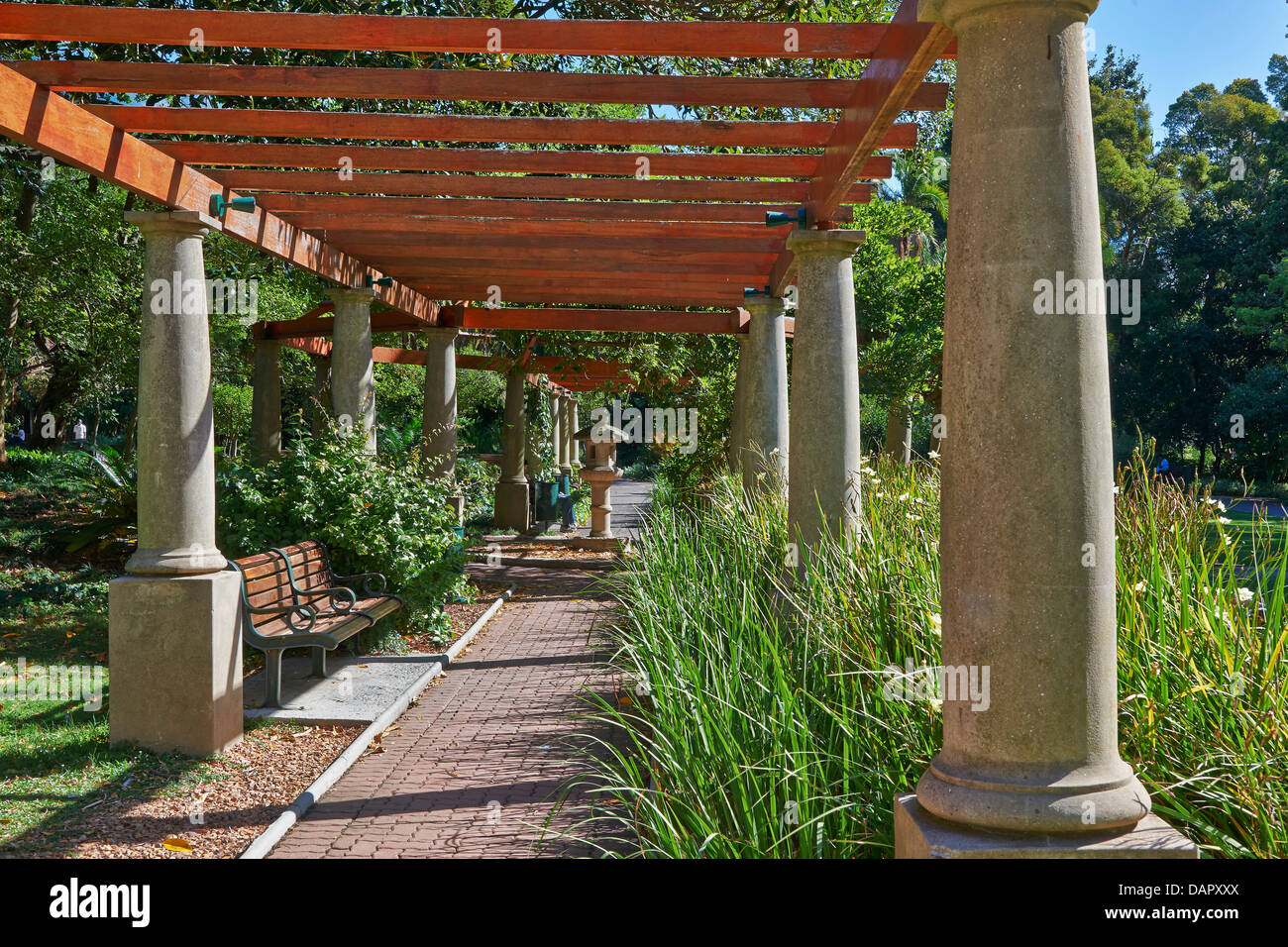 The Company Gardens, Cape Town, Western Cape, South Africa - Stock Image