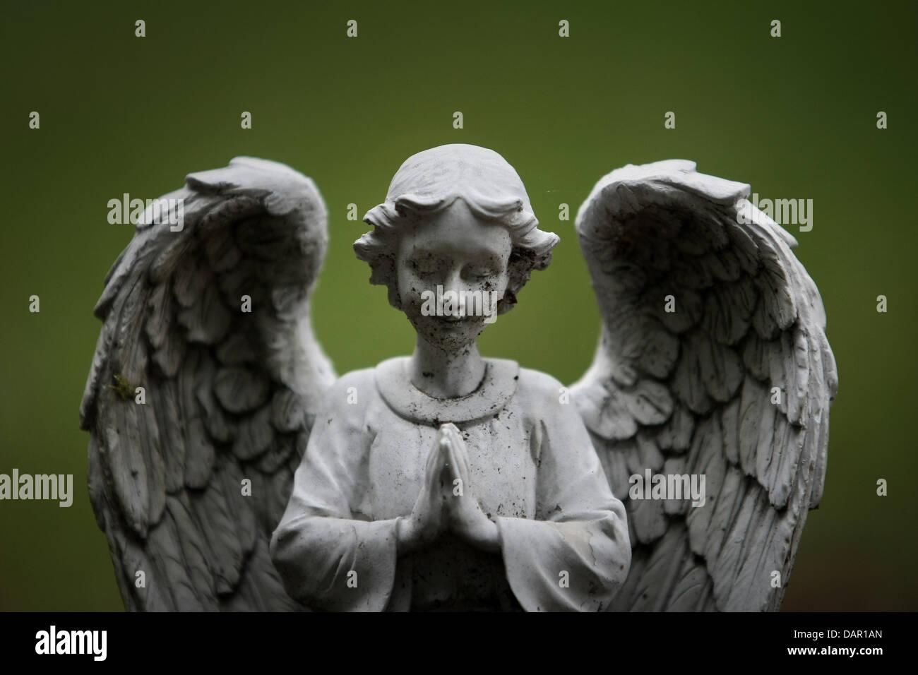 angel koblenz