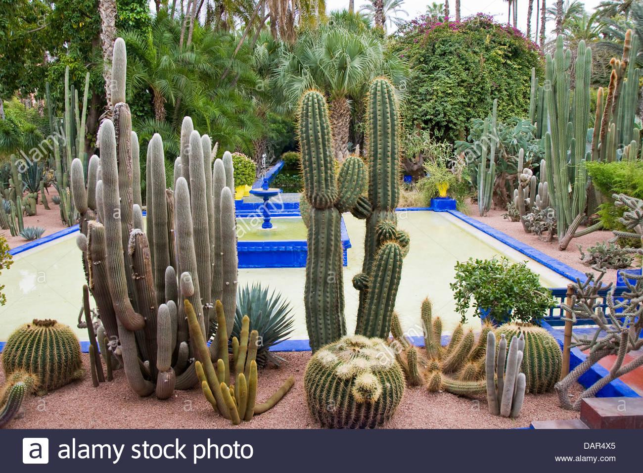 majorelle garden,marrakech,morocco - Stock Image