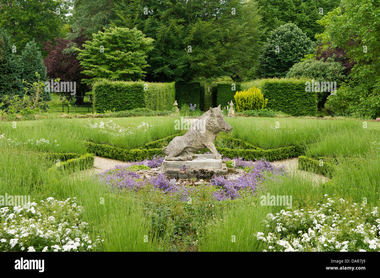 Stone hog statue in garden with box hedge borders and lavender plants in Ampney Park, 17th century English country - Stock Image