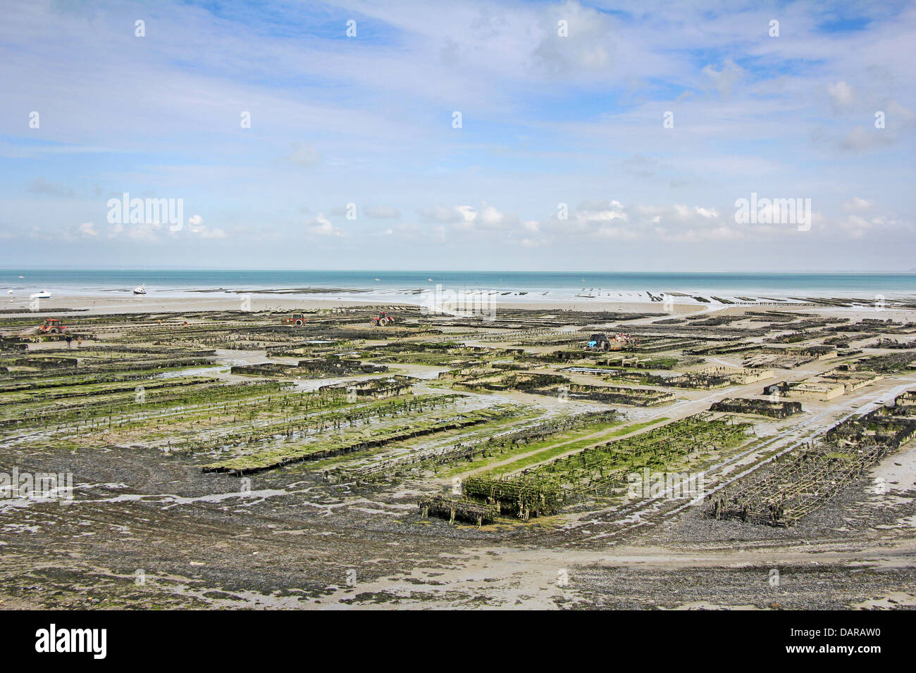 Oyster parks in Cancale, France at low tide Stock Photo