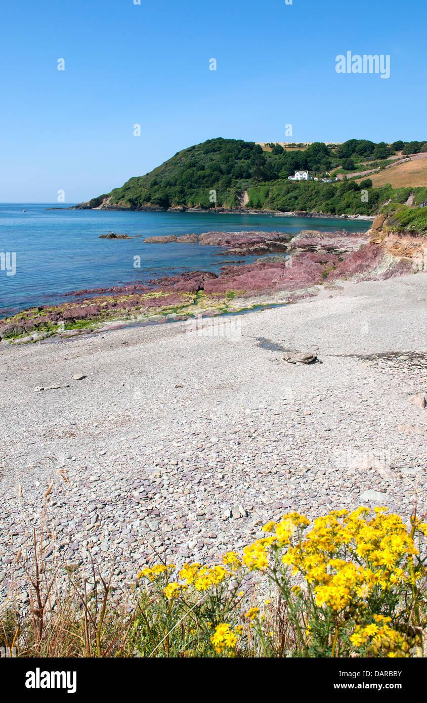 The shingle beach at talland bay near looe in cornwall, uk - Stock Image