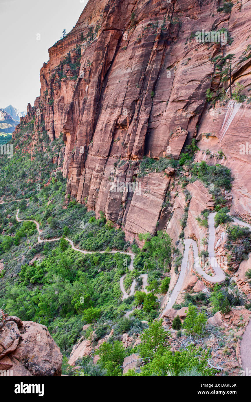 Walter's Wiggles on the Angels Landing Trail, Zion National Park, Utah Stock Photo