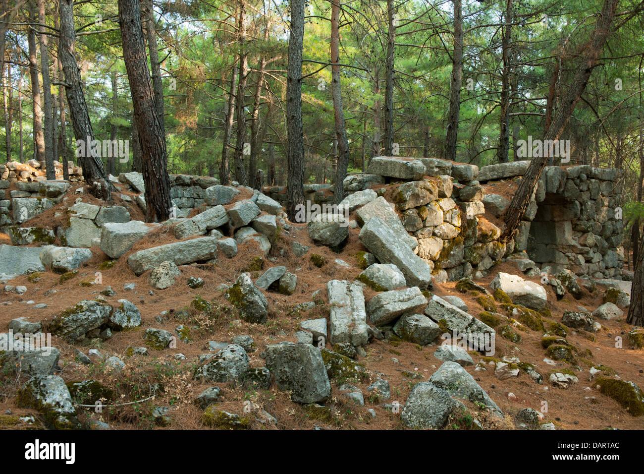 Asien, Türkei, Provinz Mugla, Ausgrabung von Cadianda nördlich von Fethiye - Stock Image