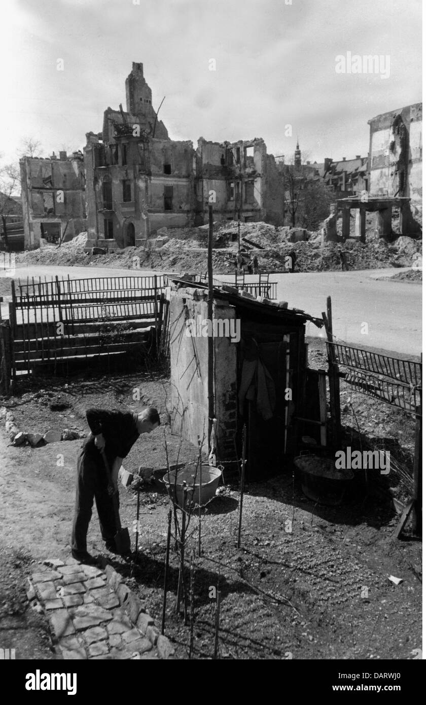 post war period, misery and hardship, Germany, food shortage, gardening among ruins, 1947, Additional-Rights-Clearences - Stock Image