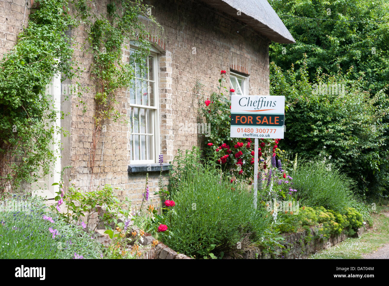 An old thatched cottage country house for sale in Cambridgeshire UK with for sale board outside - Stock Image