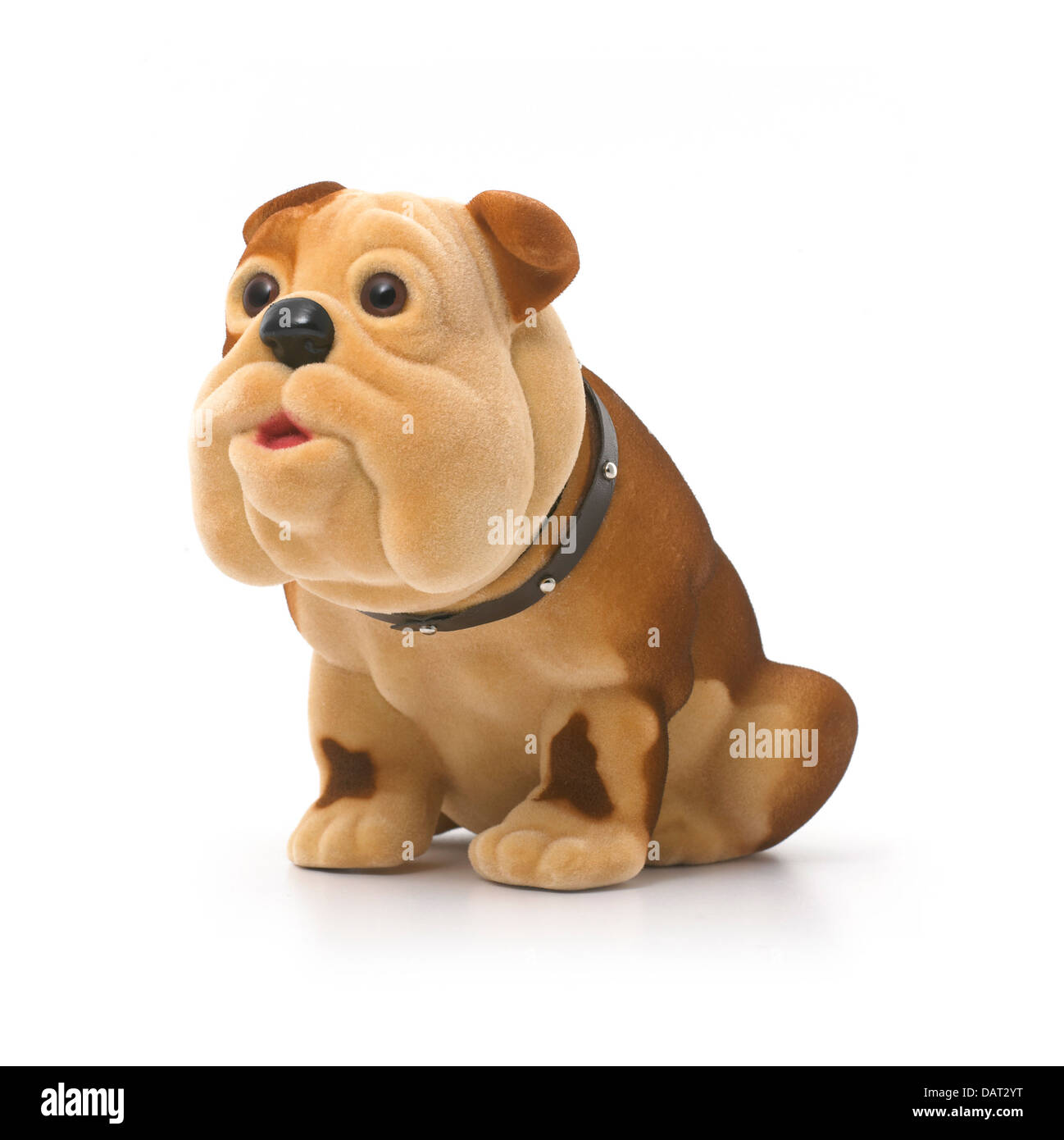 toy dog cut out onto a white background - Stock Image