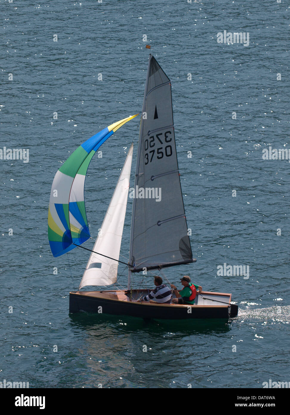 Small sail boat with spinnaker, Devon, UK 2013 - Stock Image
