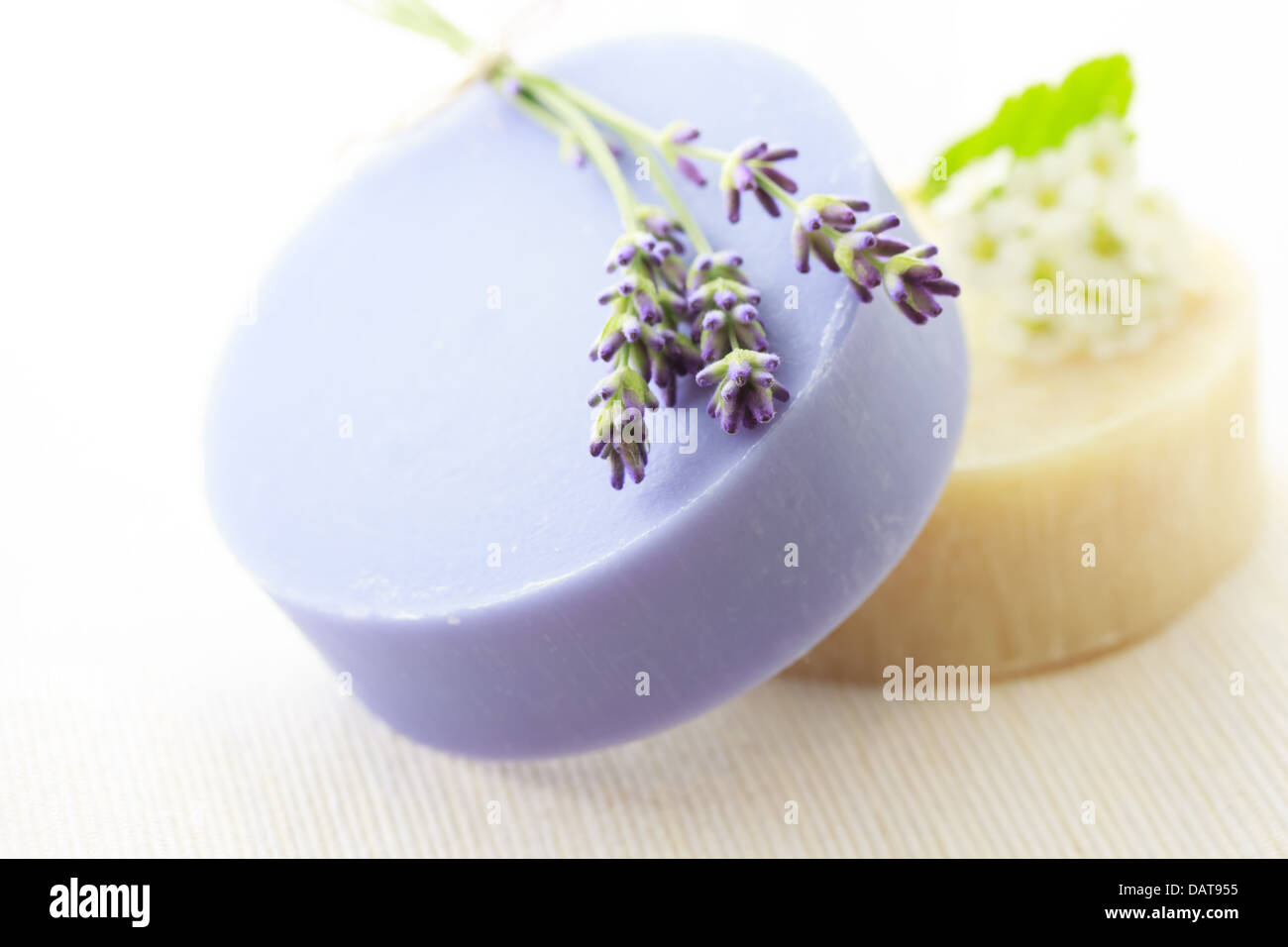 Handmade soap with fresh lavenders and white flowers - Stock Image