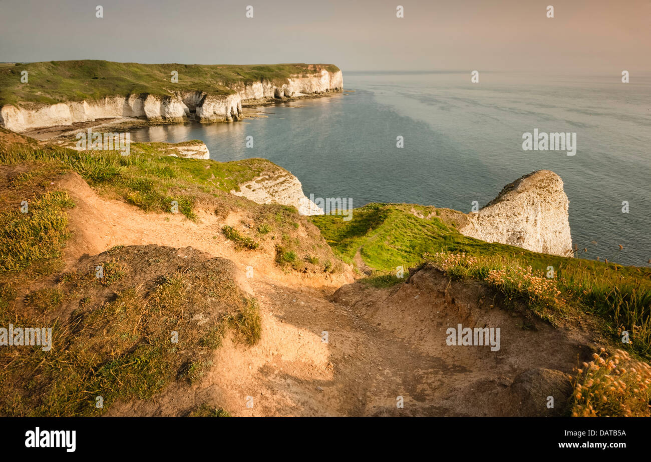 The high chalk cliffs, coastline, and promontory, all flanked by the North Sea on a fine morning in summer. - Stock Image