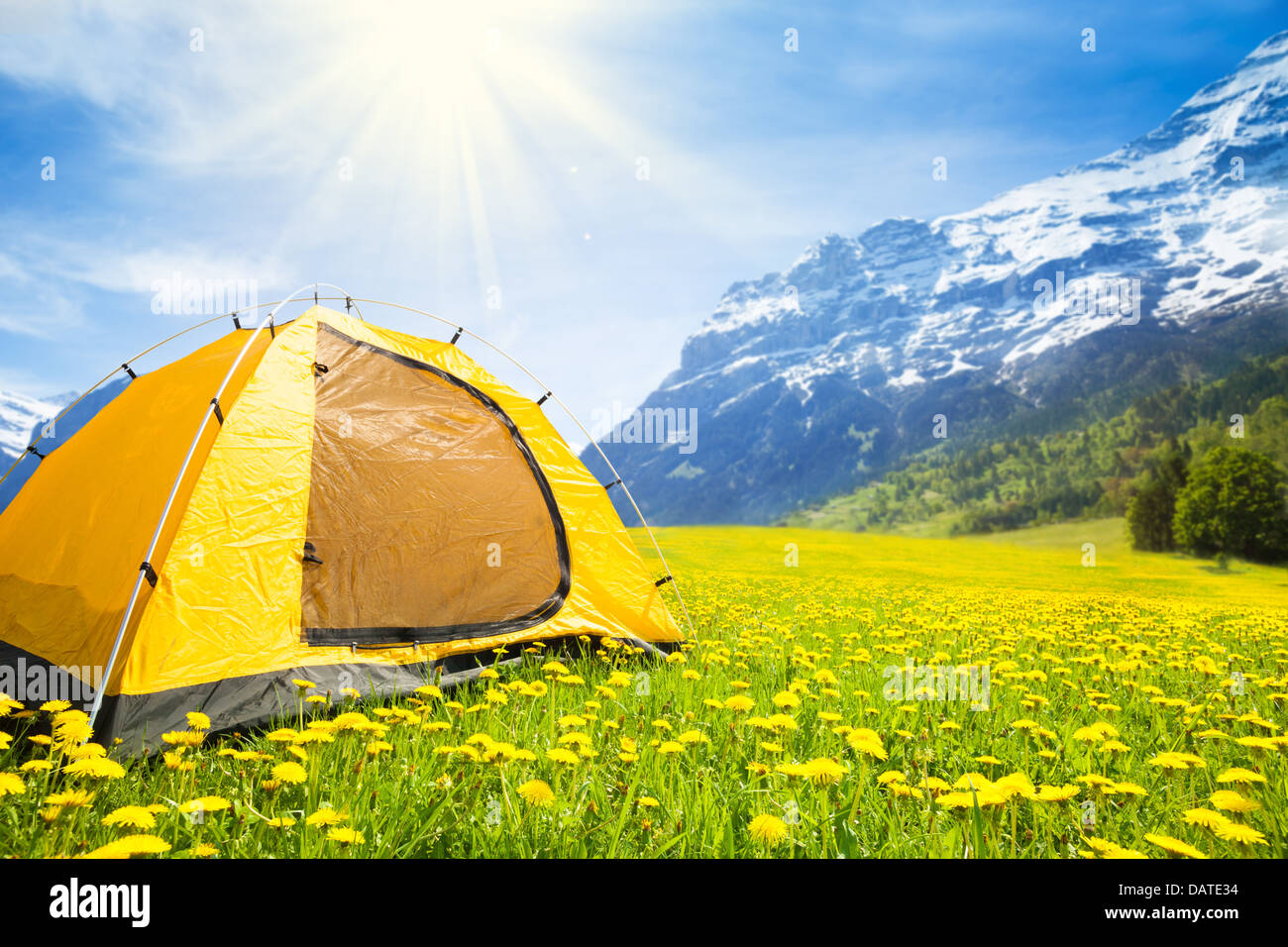 Big Yellow Family Sized Camping Tent In The Nice Dandelion Field With Mountains On Background