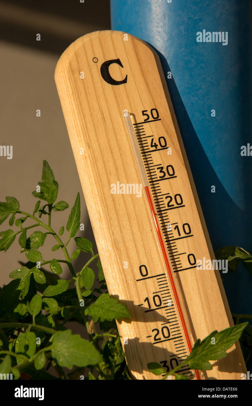 thermometer in the hot summer sun - Stock Image