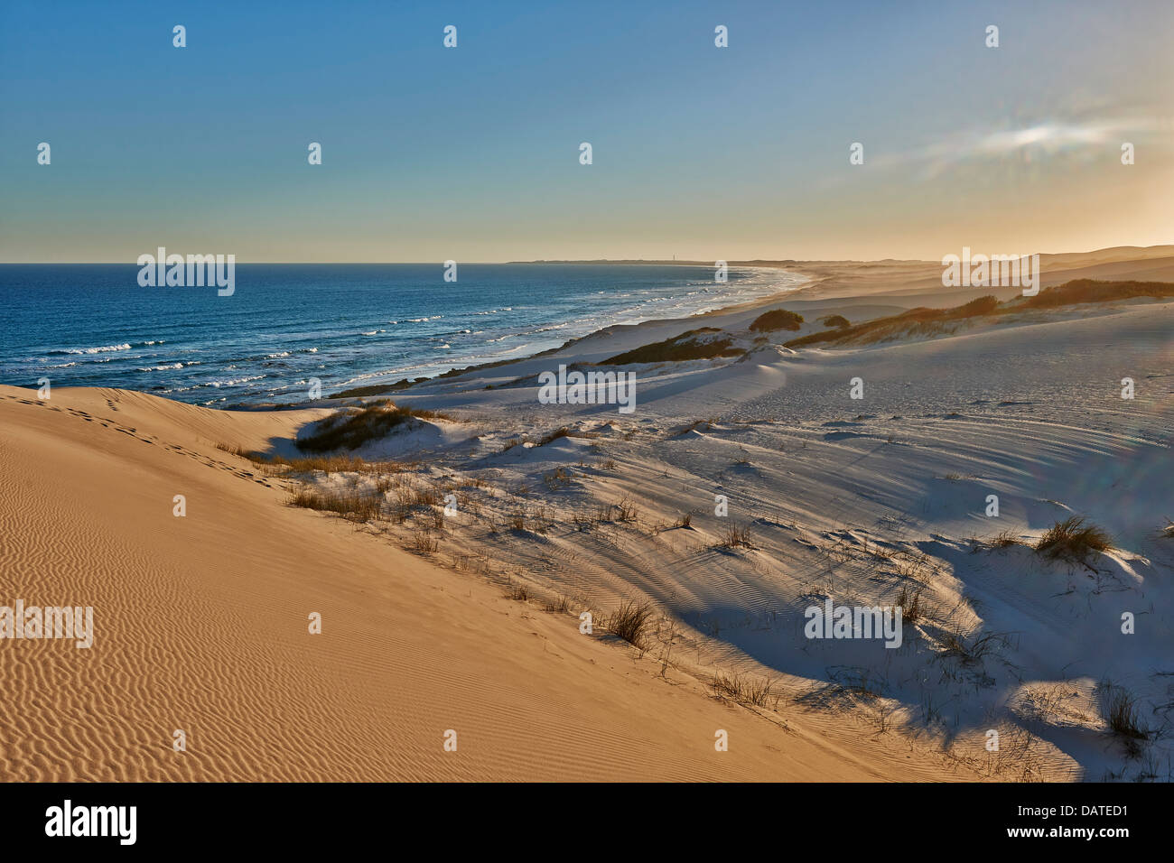 dunes and beach in De Hoop Nature Reserve, Western Cape, South Africa - Stock Image
