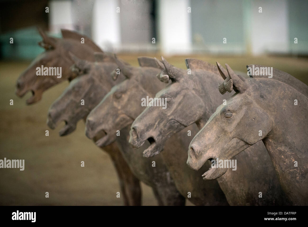 Xi'an terracotta horses, China - Stock Image