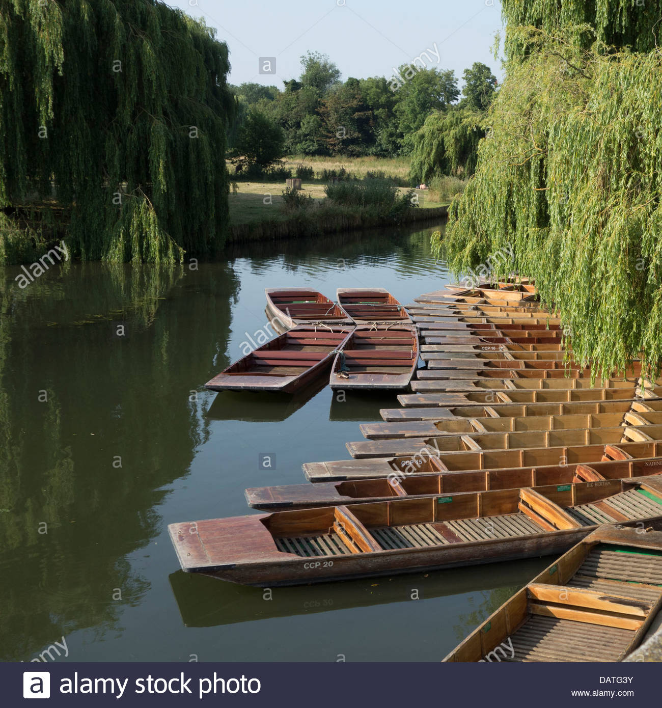 Empty punts on the River Cam in Cambridge in the early morning sunshine - Stock Image