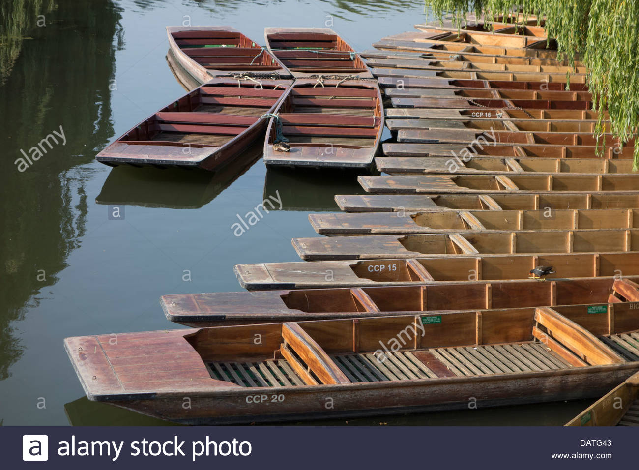 Empty punts on the River Cam in Cambridge in the early morning sunshine, ready for another hot sunny day. - Stock Image