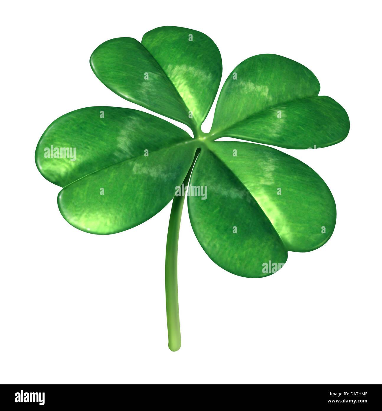 Four leaf clover plant as an Irish symbol for a green lucky charm