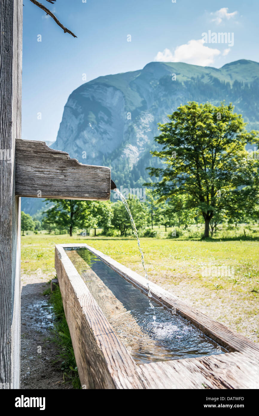 Picture of a drink fountain with running water in the Austrian Alps with mountains and trees in summer - Stock Image