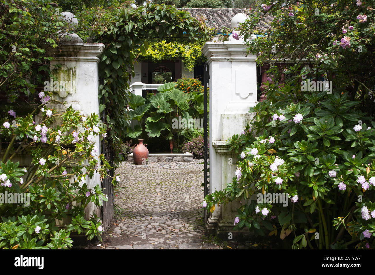Hacienda Courtyard Stock Photos Hacienda Courtyard Stock Images