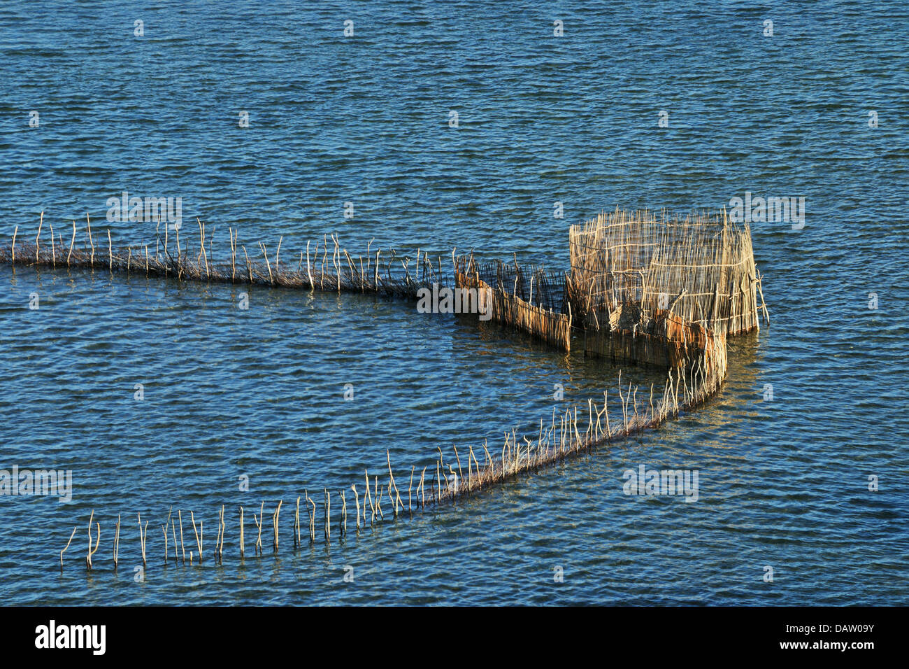 African fishtraps made of reeds at Kosi bay, Natal South Africa Stock Photo