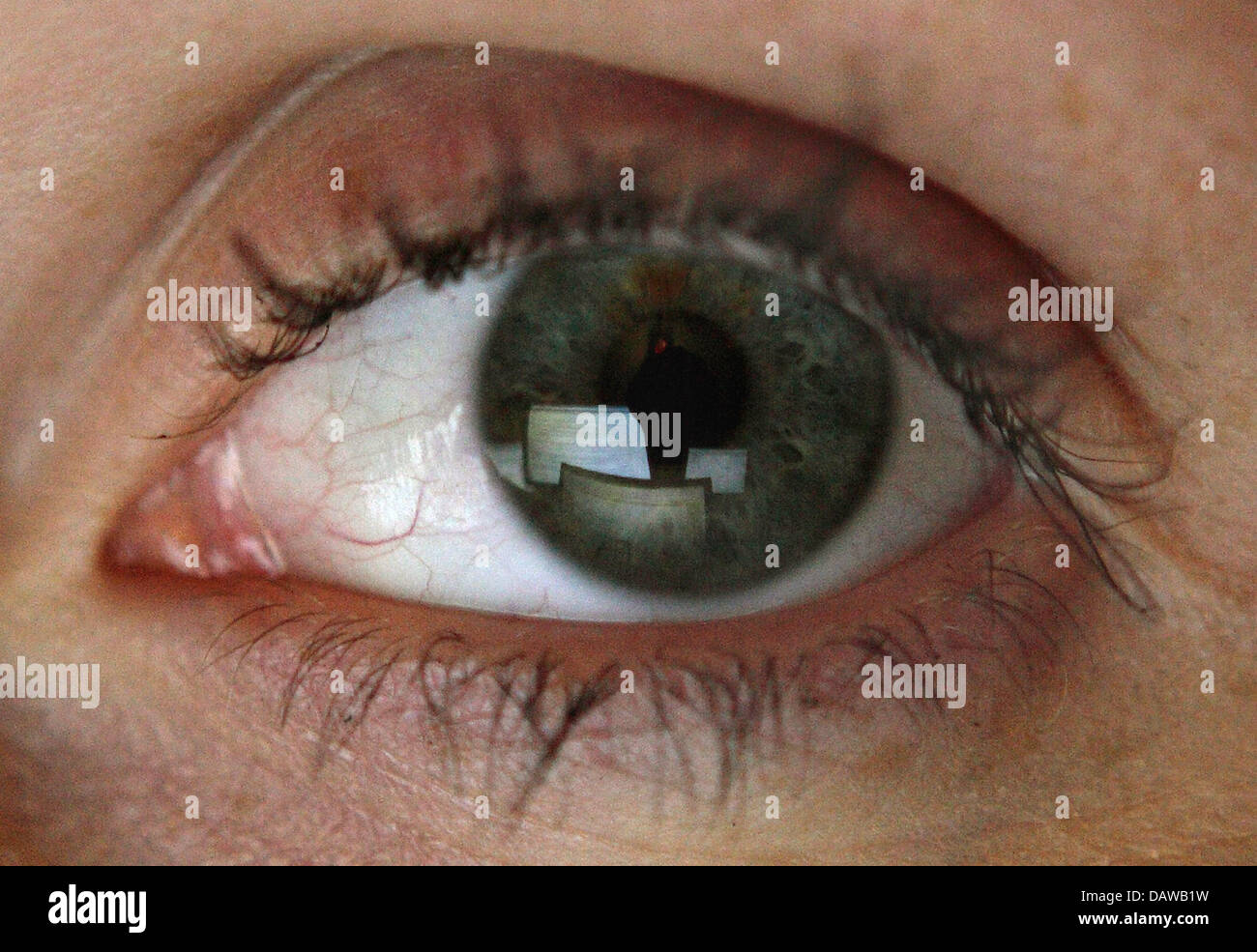 Computer screens are reflected in the eye of woman in Hamburg, Germany, 02 December 2006. Photo: Sebastian Widmann - Stock Image