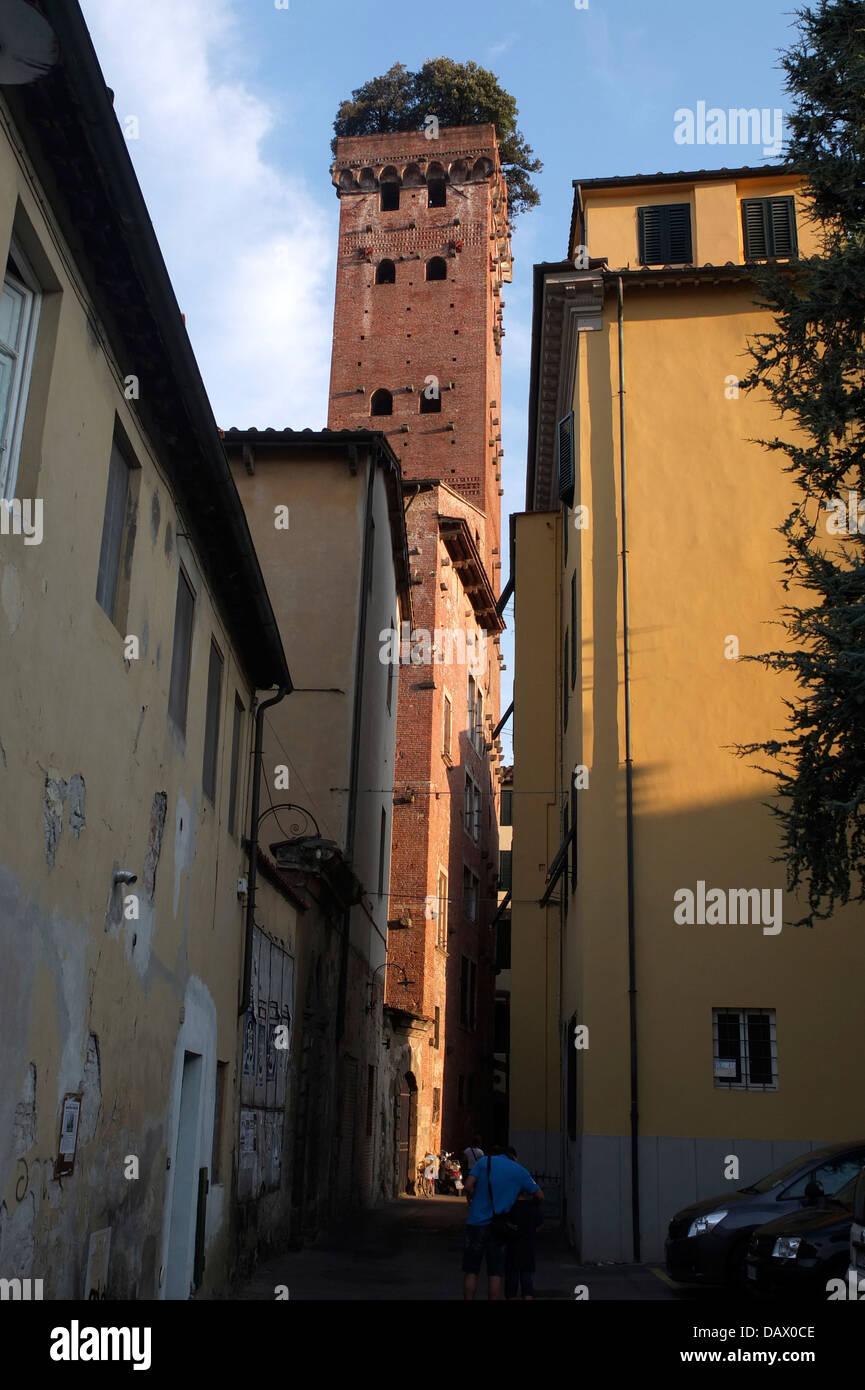 Lucca Torre Guinigi - Stock Image