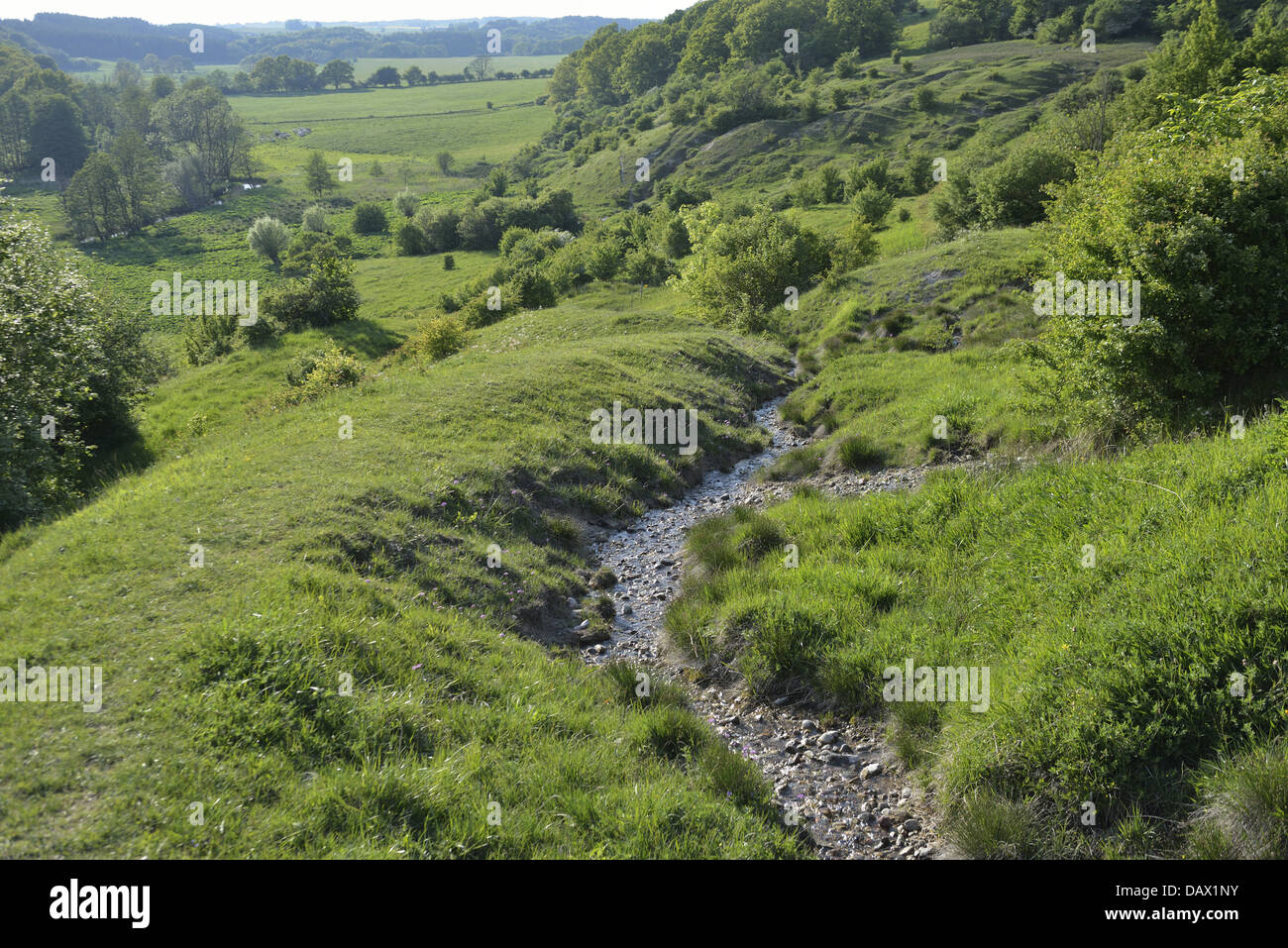 Nature reserve with hilly meadows,springs and orchid marshes on the warm southwest slope of Fyledalen - Stock Image