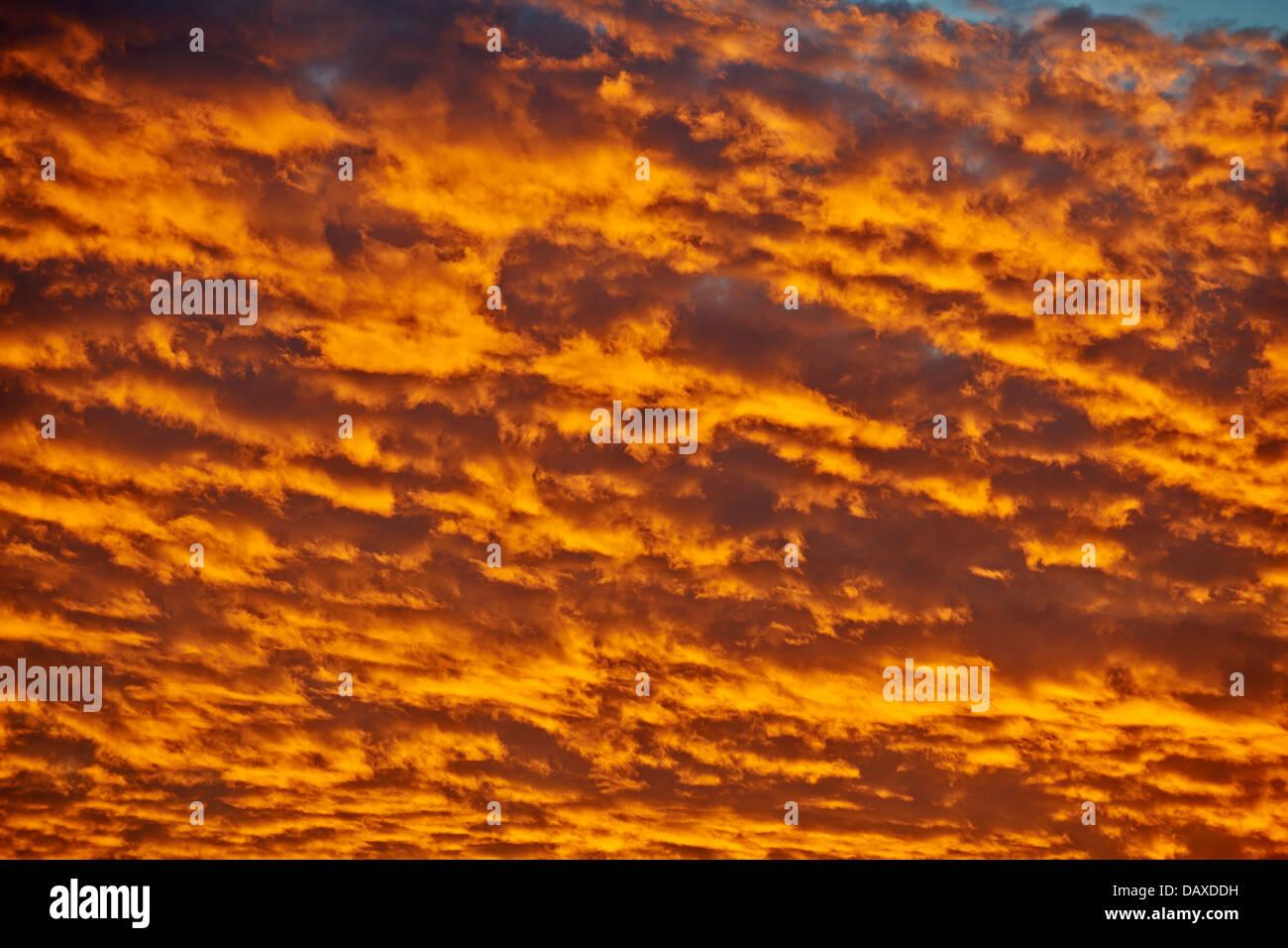 sunset in Central Kalahari Game Reserve, Botswana, Africa - Stock Image