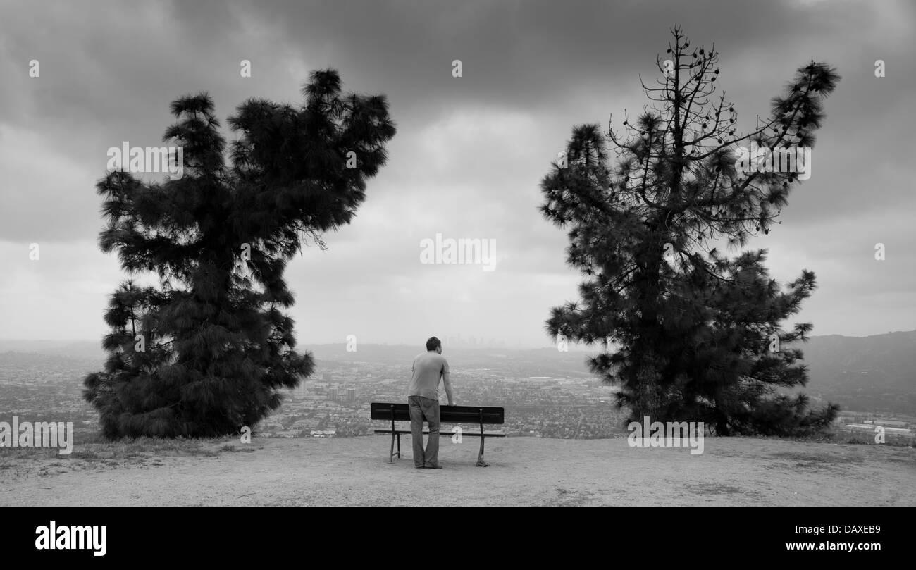 Man standing behind bench between trees overlooking Los Angeles - Stock Image