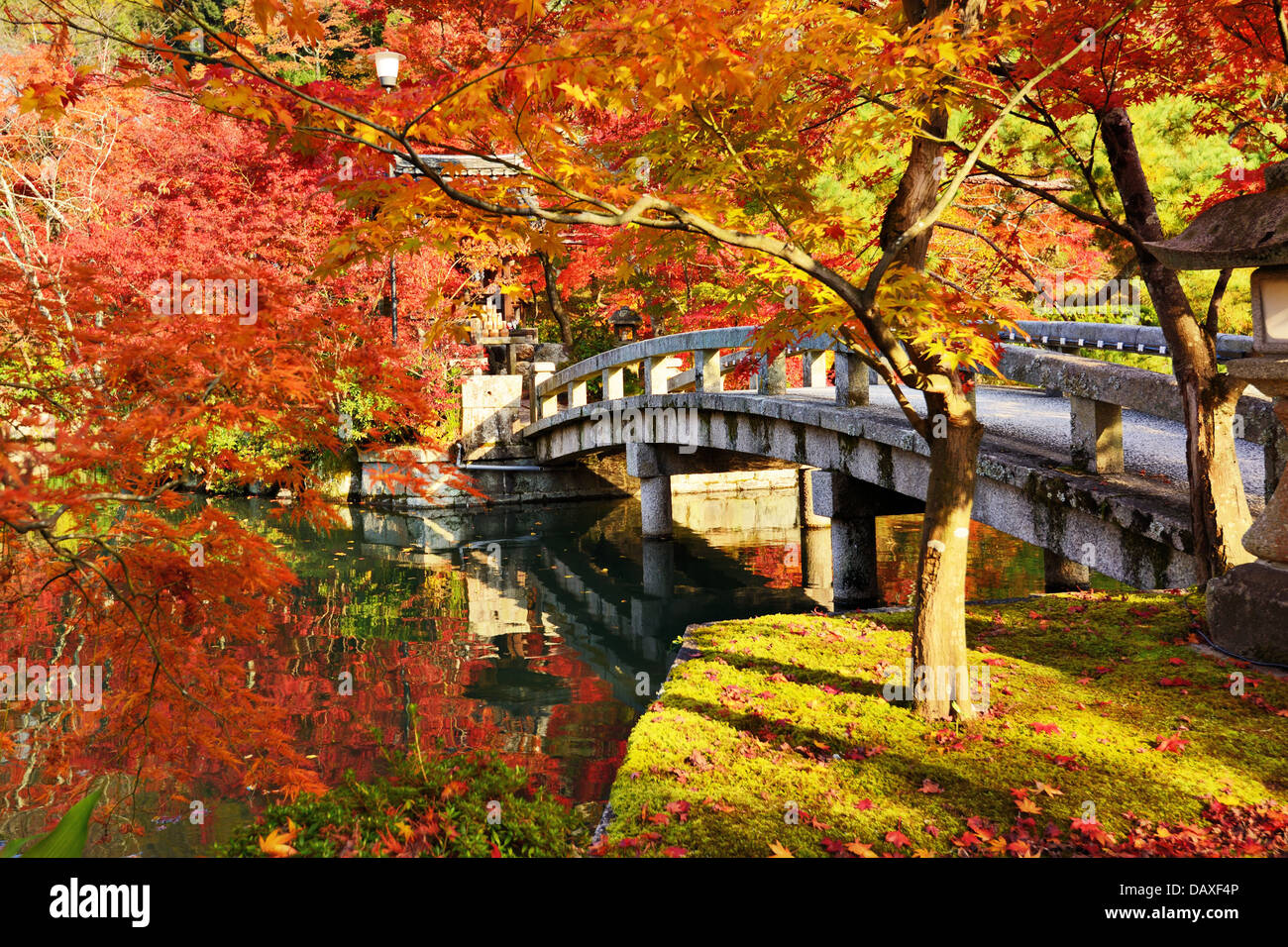 Fall foliage at Eikando Temple in Kyoto, Japan. - Stock Image