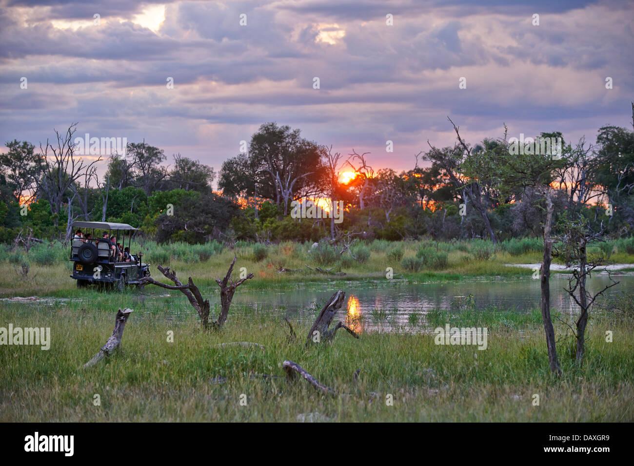 safari car during sunset in Chitabe, Okavango Delta, Botswana, Africa - Stock Image