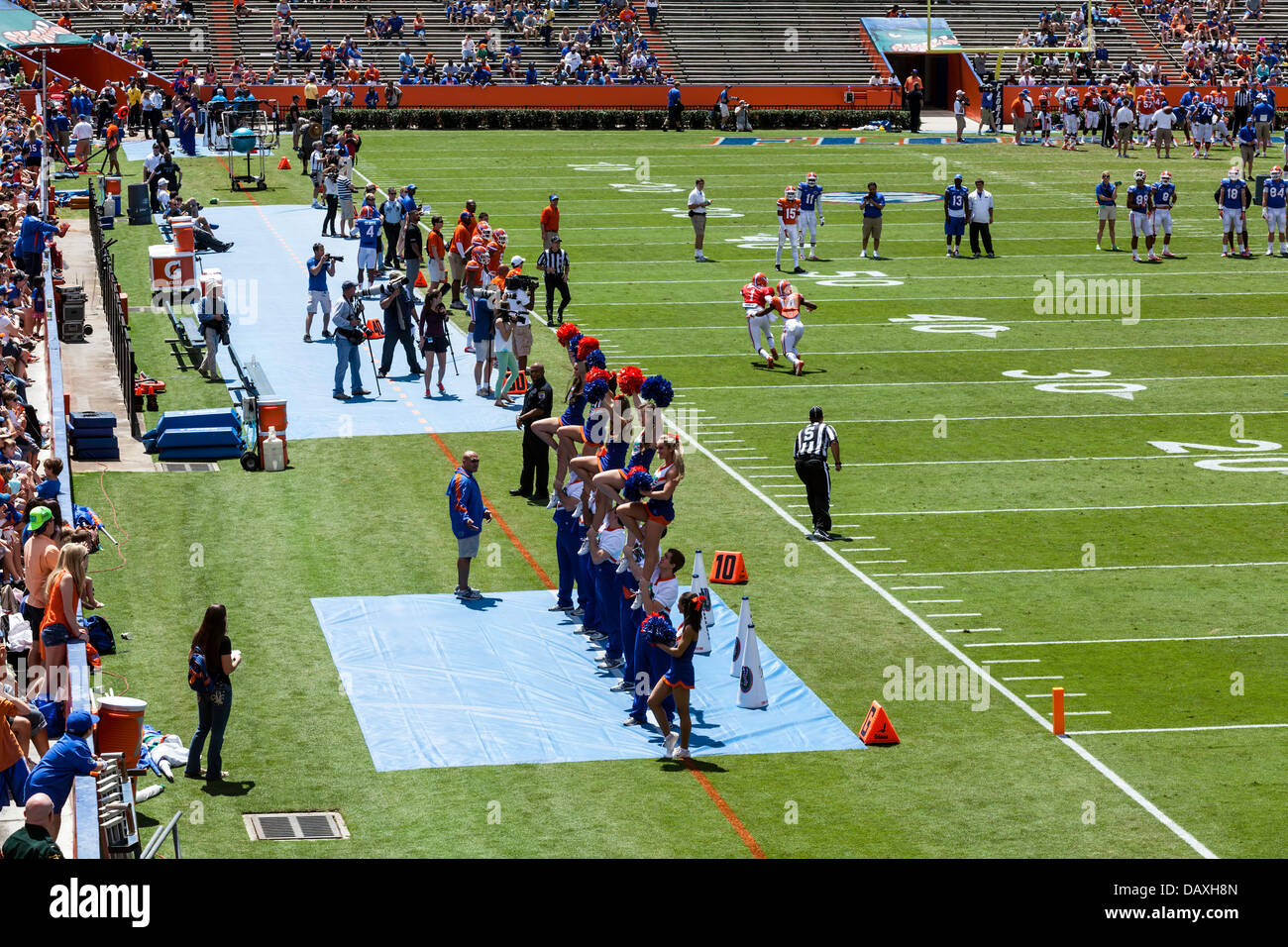 UF Gators cheerleaders 2013 Annual Spring Orange and Blue football game Ben Hill Griffin Stadium Florida Field a.k.a. - Stock Image