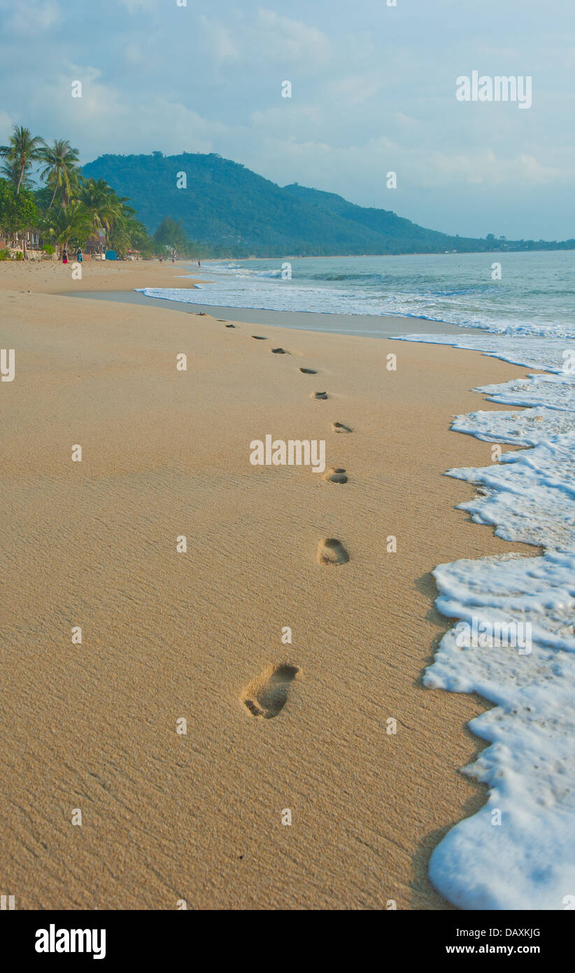 footprints in a tropical beach - Stock Image