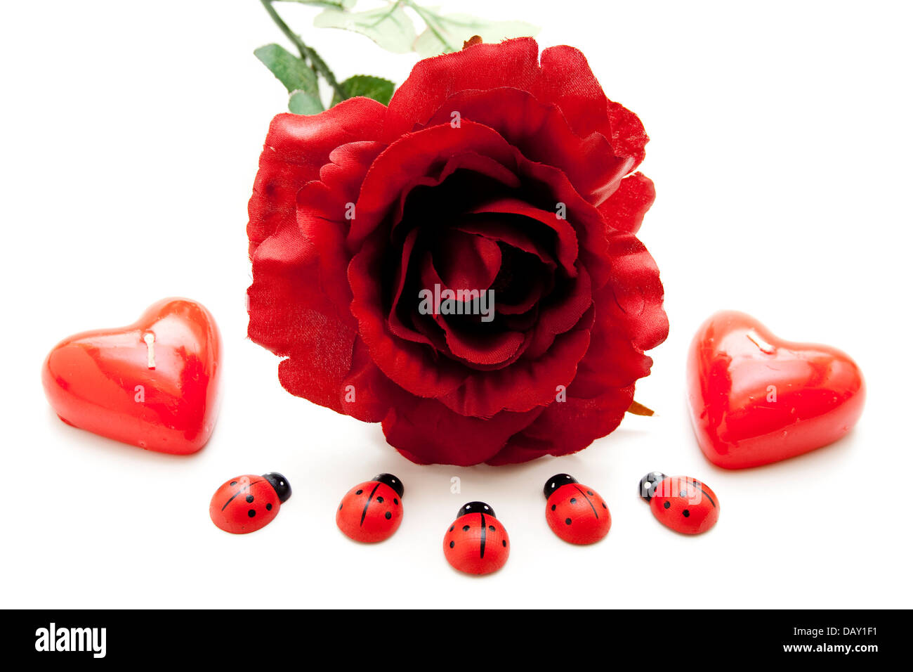 Red rose with heart candles and beetle - Stock Image