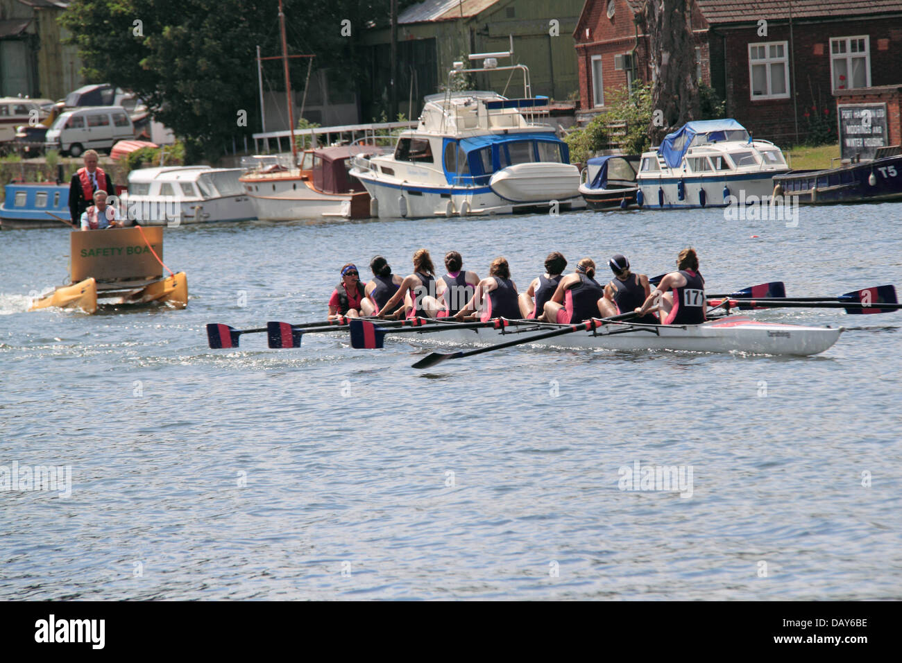 Twickenham Rowing Club women's coxed eight at Molesey Amateur Regatta, 20th July 2013, River Thames, Hurst Park - Stock Image